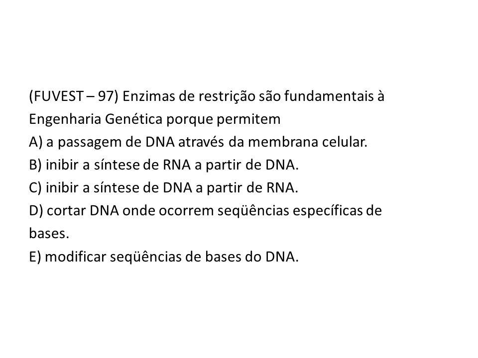 (FUVEST – 97) Enzimas de restrição são fundamentais à Engenharia Genética porque permitem A) a passagem de DNA através da membrana celular.