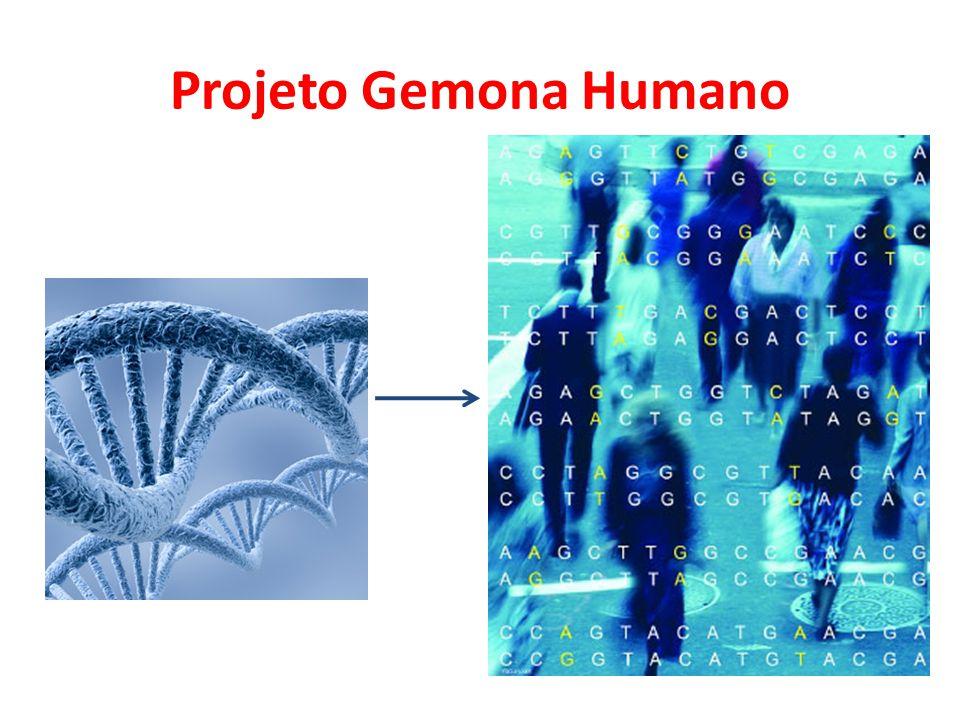 Projeto Gemona Humano Objetivos