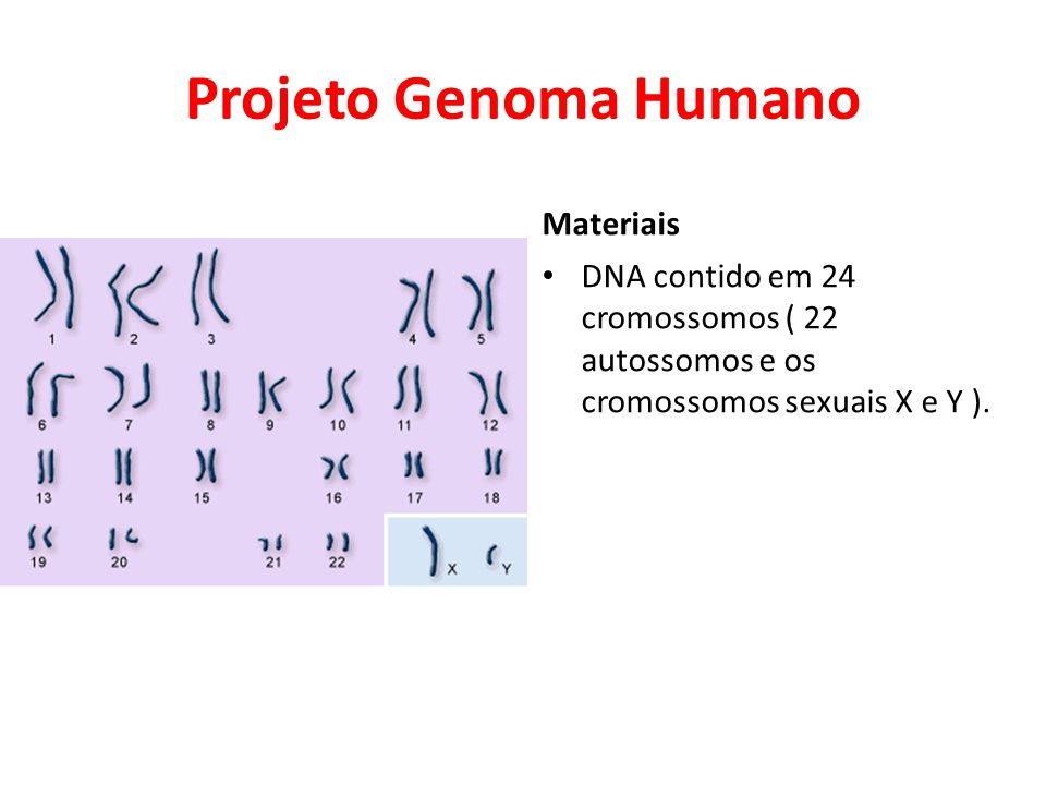 Projeto Genoma Humano Materiais