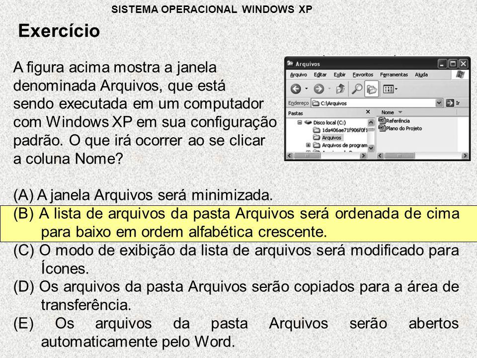 Exercício A figura acima mostra a janela denominada Arquivos, que está