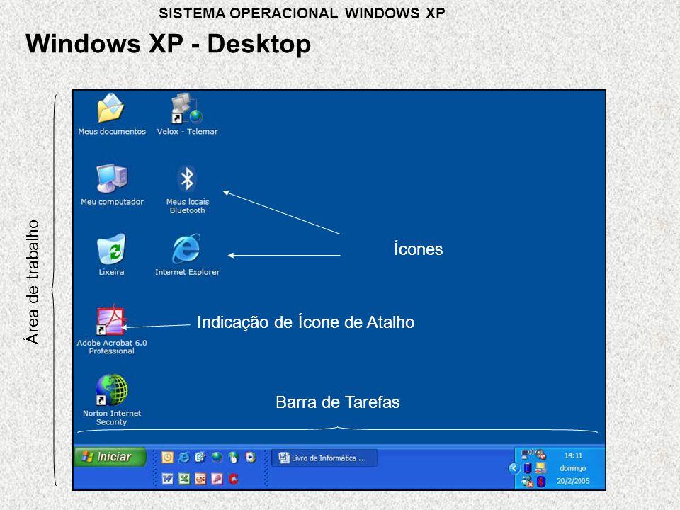 Windows XP - Desktop Ícones Área de trabalho