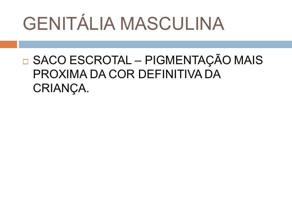 GENITÁLIA MASCULINA SACO ESCROTAL – PIGMENTAÇÃO MAIS PROXIMA DA COR DEFINITIVA DA CRIANÇA.