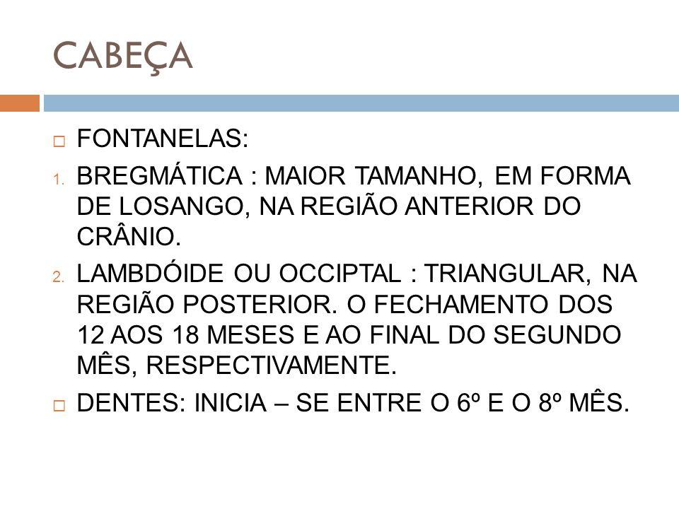 CABEÇA FONTANELAS: BREGMÁTICA : MAIOR TAMANHO, EM FORMA DE LOSANGO, NA REGIÃO ANTERIOR DO CRÂNIO.