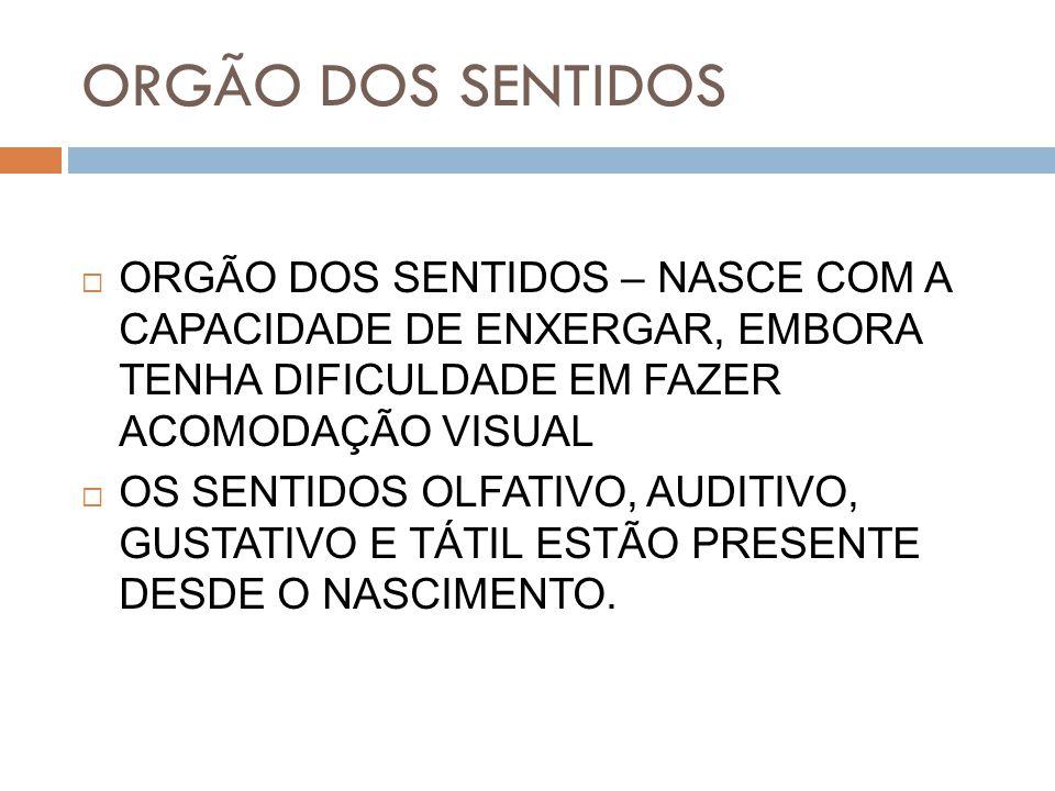 ORGÃO DOS SENTIDOS ORGÃO DOS SENTIDOS – NASCE COM A CAPACIDADE DE ENXERGAR, EMBORA TENHA DIFICULDADE EM FAZER ACOMODAÇÃO VISUAL.