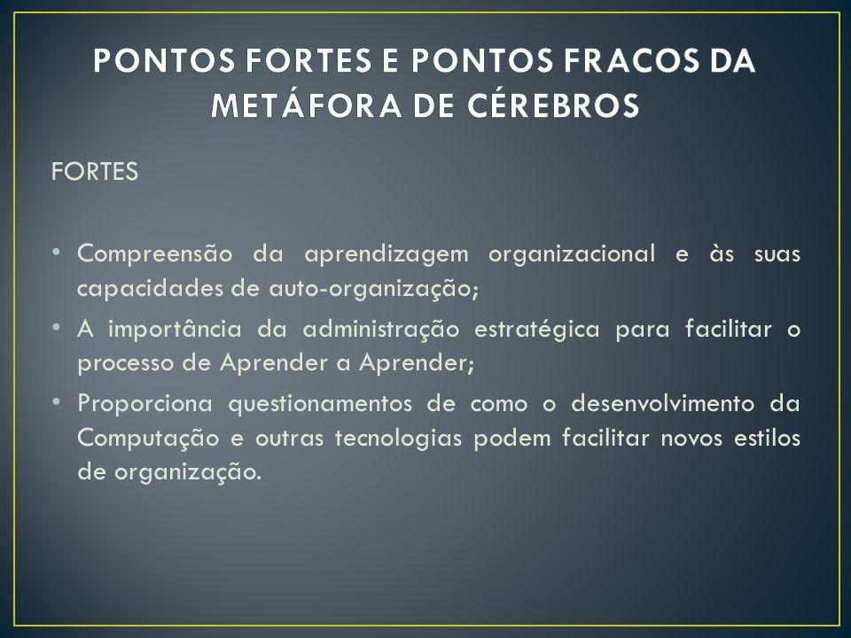 PONTOS FORTES E PONTOS FRACOS DA METÁFORA DE CÉREBROS