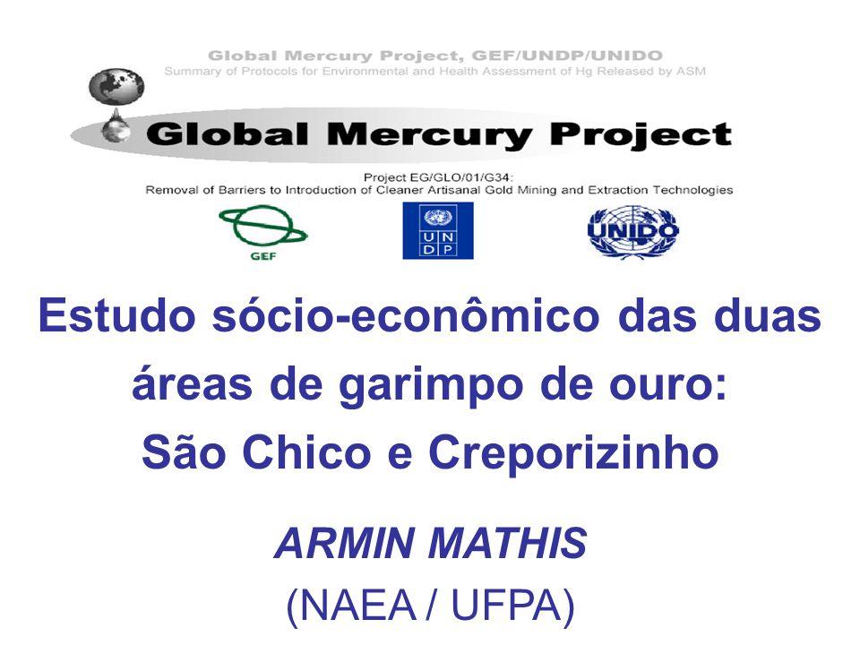 ARMIN MATHIS (NAEA / UFPA)