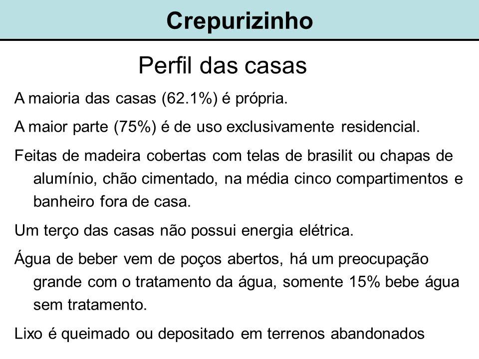Crepurizinho Perfil das casas A maioria das casas (62.1%) é própria.