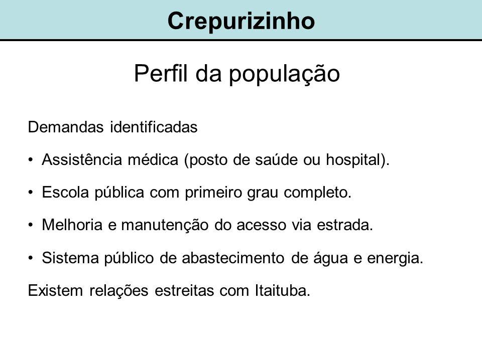 Crepurizinho Perfil da população Demandas identificadas