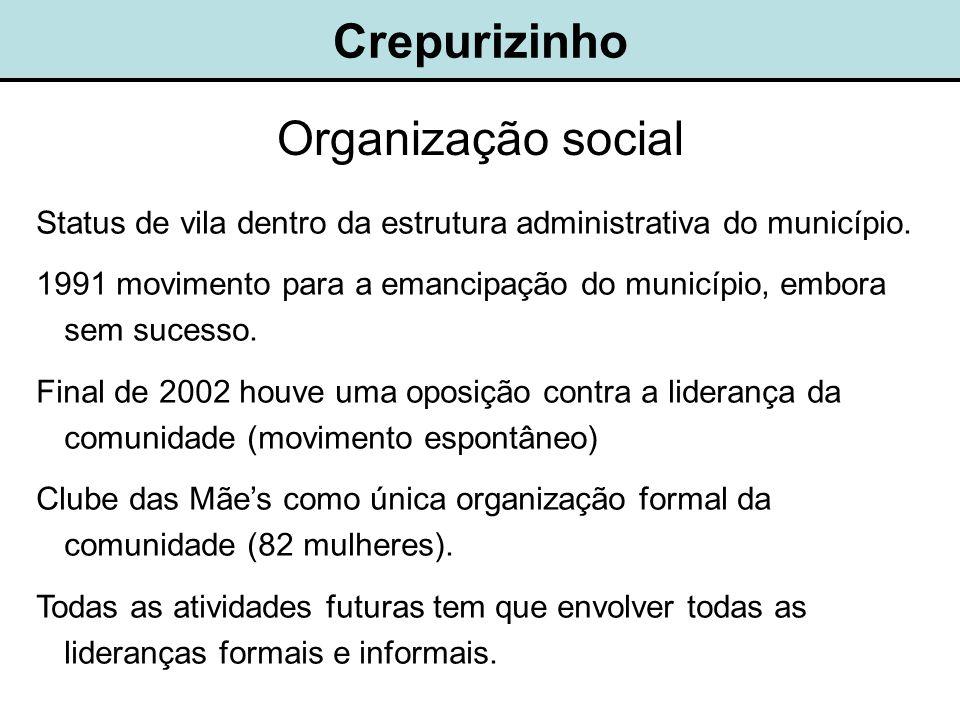 Crepurizinho Organização social