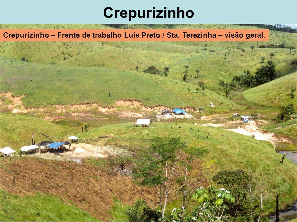 Crepurizinho Crepurizinho – Frente de trabalho Luis Preto / Sta. Terezinha – visão geral.