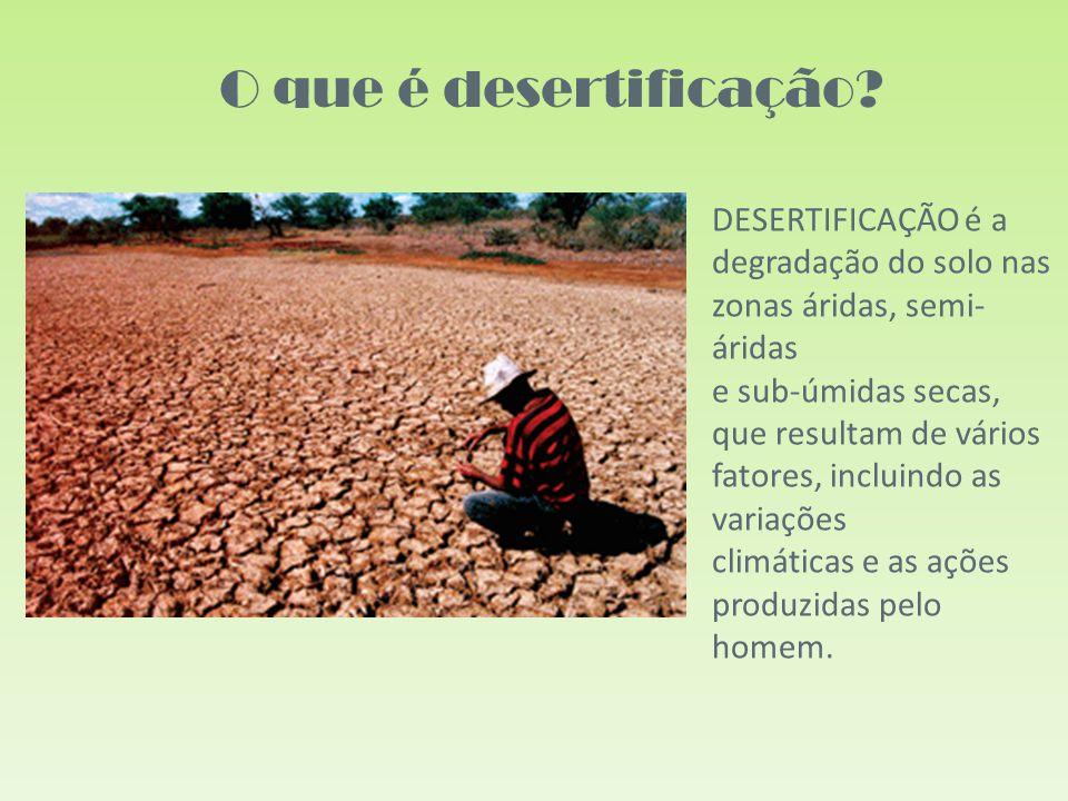 O que é desertificação