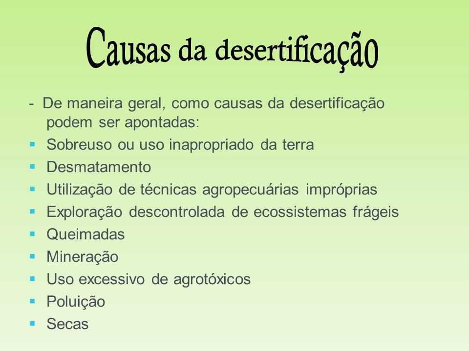 Causas da desertificação