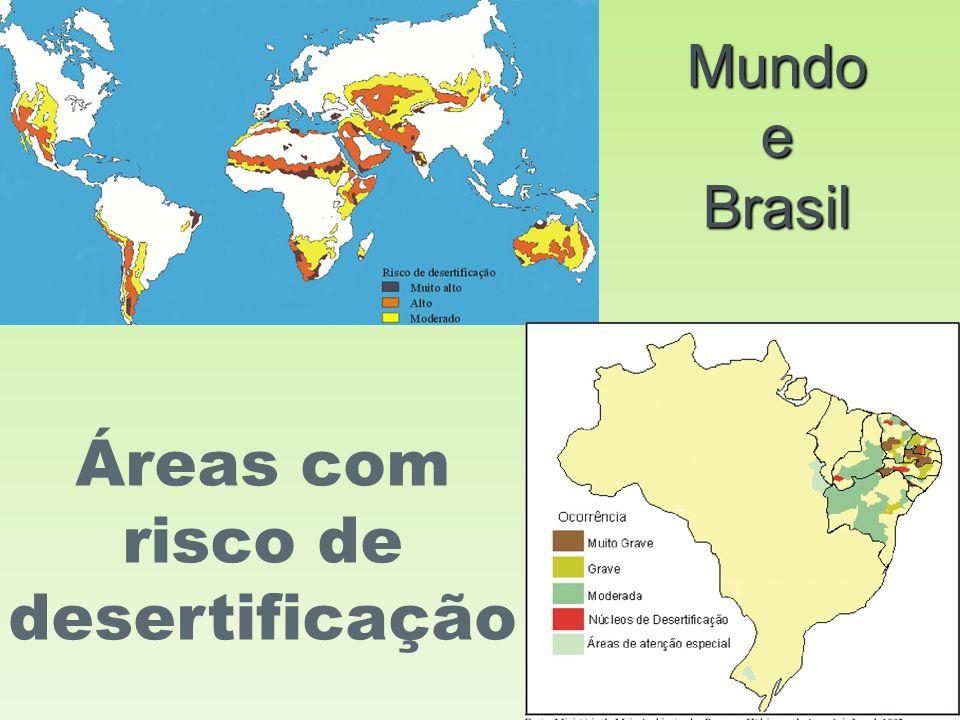 Áreas com risco de desertificação
