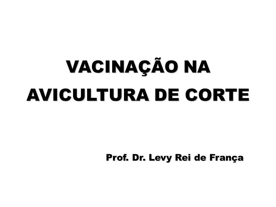 VACINAÇÃO NA AVICULTURA DE CORTE