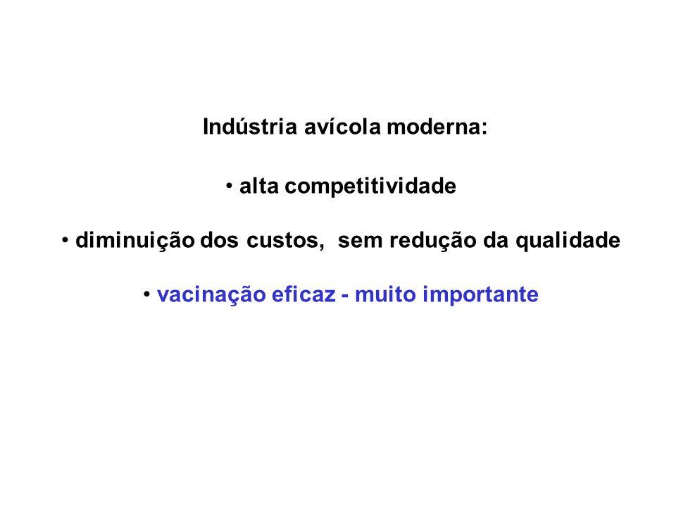 Indústria avícola moderna: