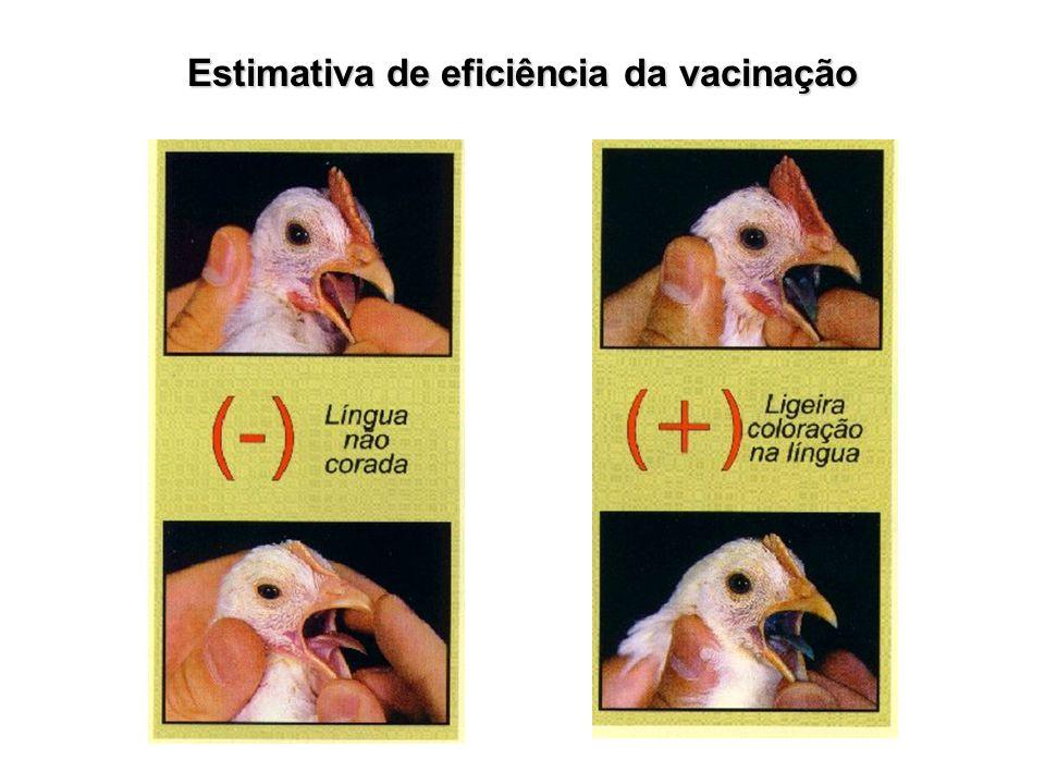 Estimativa de eficiência da vacinação
