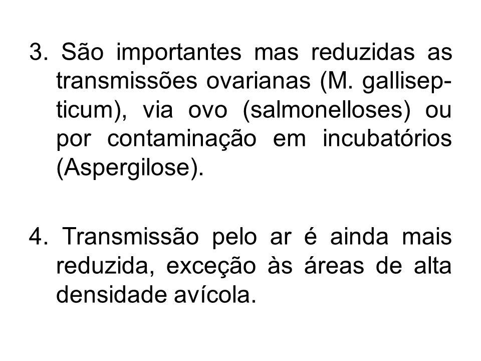 3. São importantes mas reduzidas as transmissões ovarianas (M