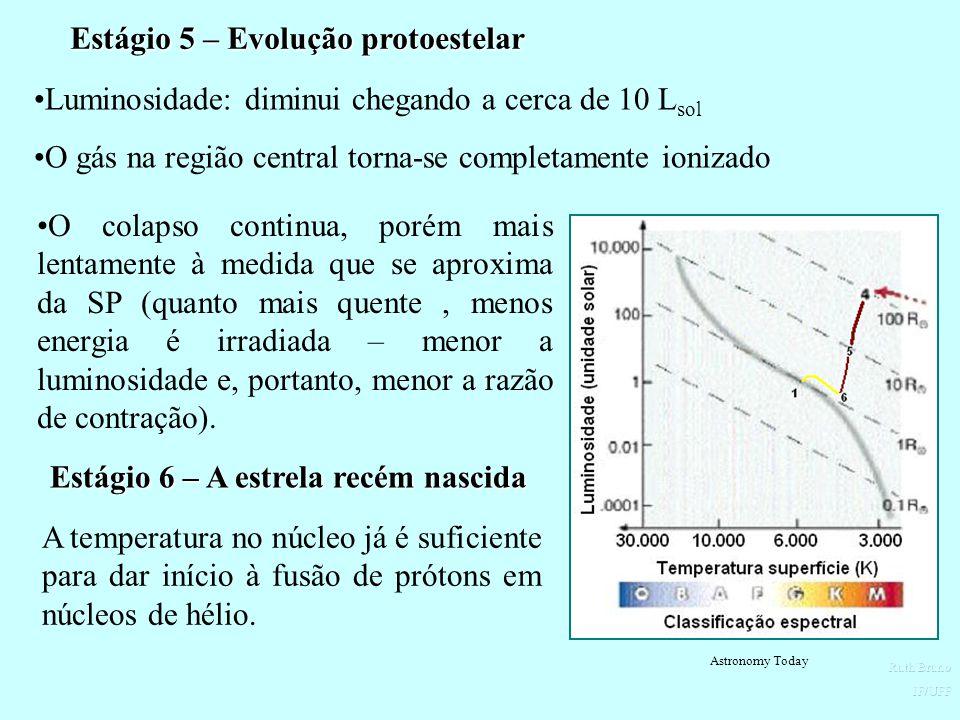 Estágio 5 – Evolução protoestelar