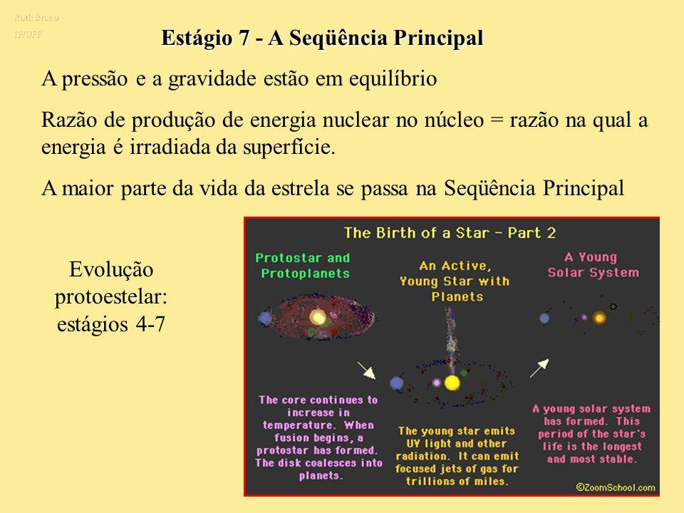 Evolução protoestelar: estágios 4-7