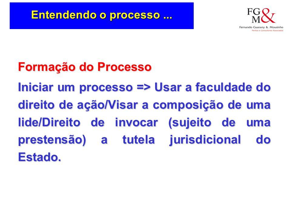 Entendendo o processo ... Formação do Processo.