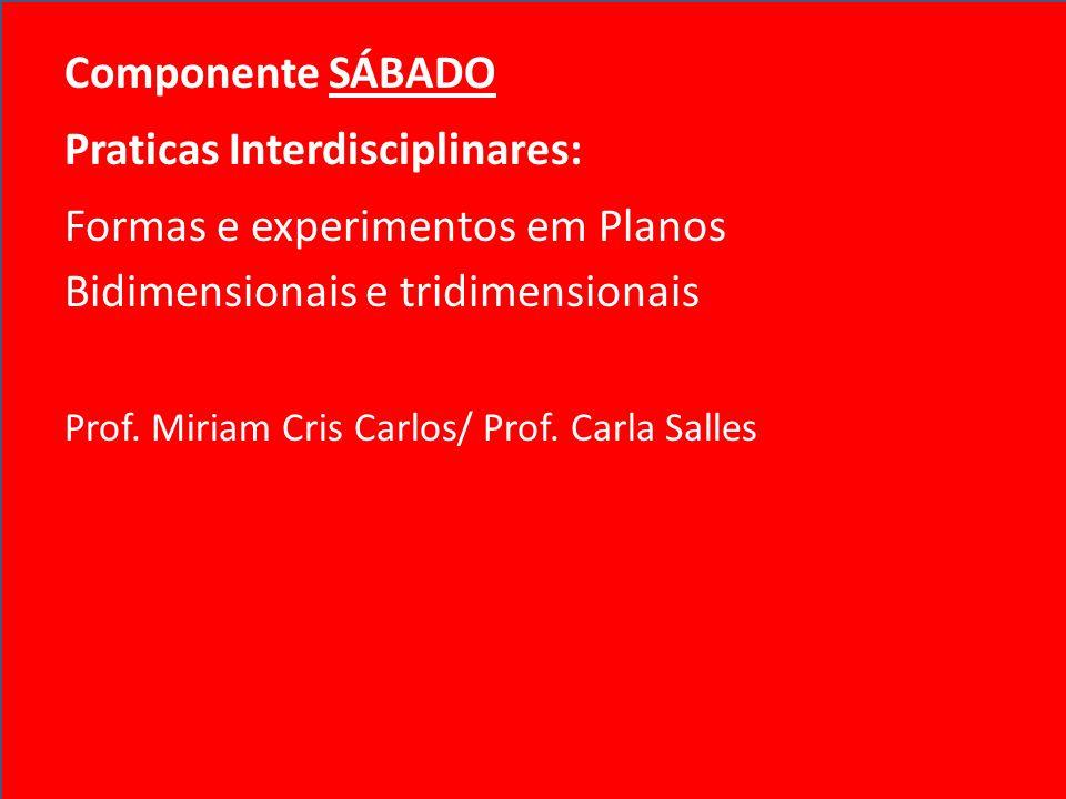 Praticas Interdisciplinares: