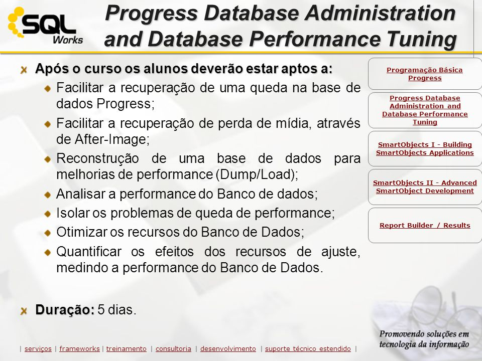 Progress Database Administration and Database Performance Tuning