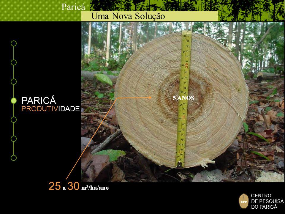 PARICÁ 5 ANOS PRODUTIVIDADE 25 a 30 m3/ha/ano