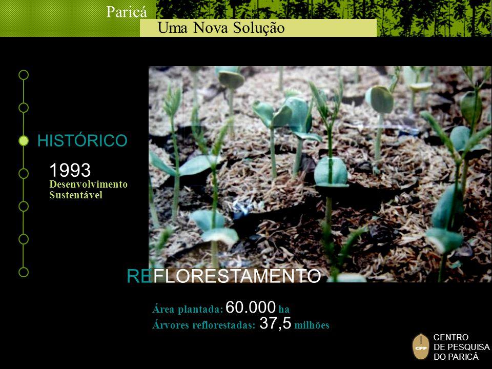 1993 REFLORESTAMENTO HISTÓRICO Desenvolvimento Sustentável