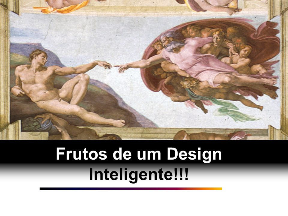 Frutos de um Design Inteligente!!!
