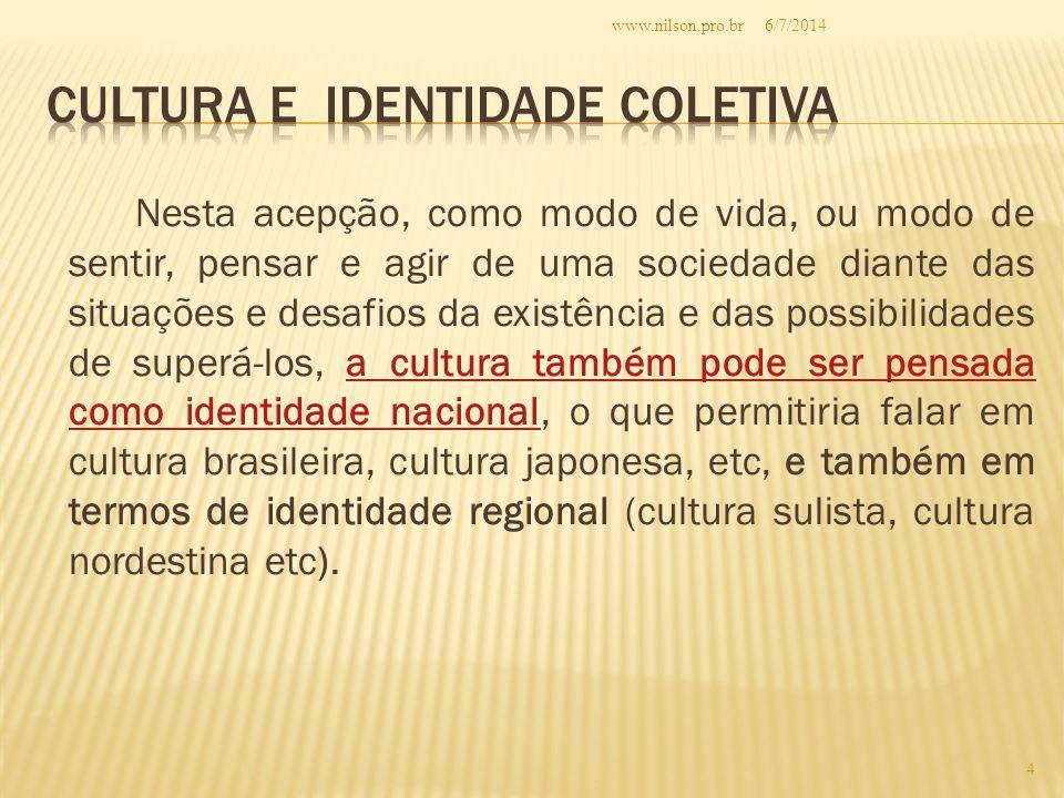Cultura e identidade coletiva
