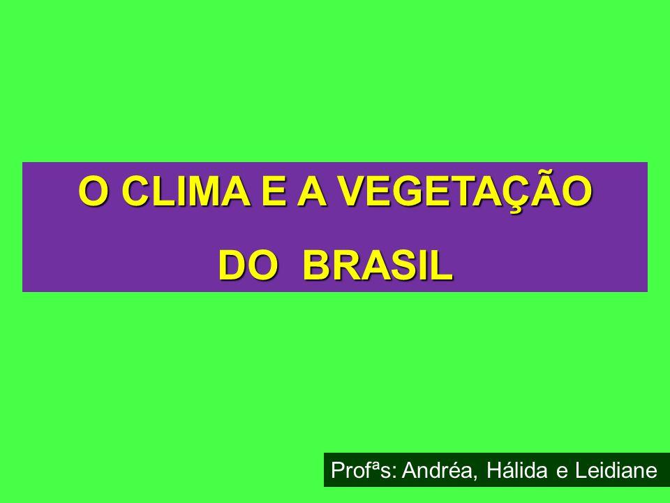 O CLIMA E A VEGETAÇÃO DO BRASIL