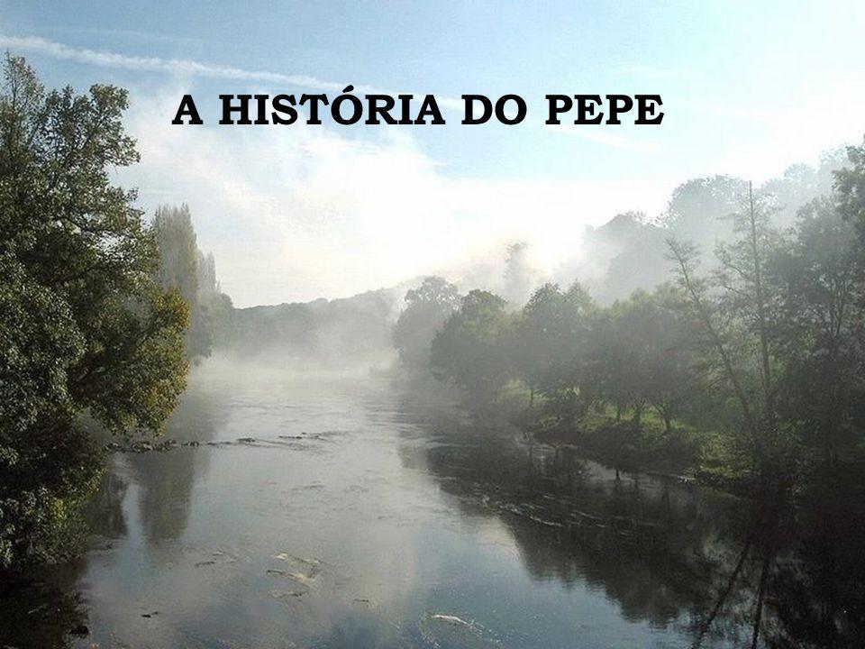 A HISTÓRIA DO PEPE