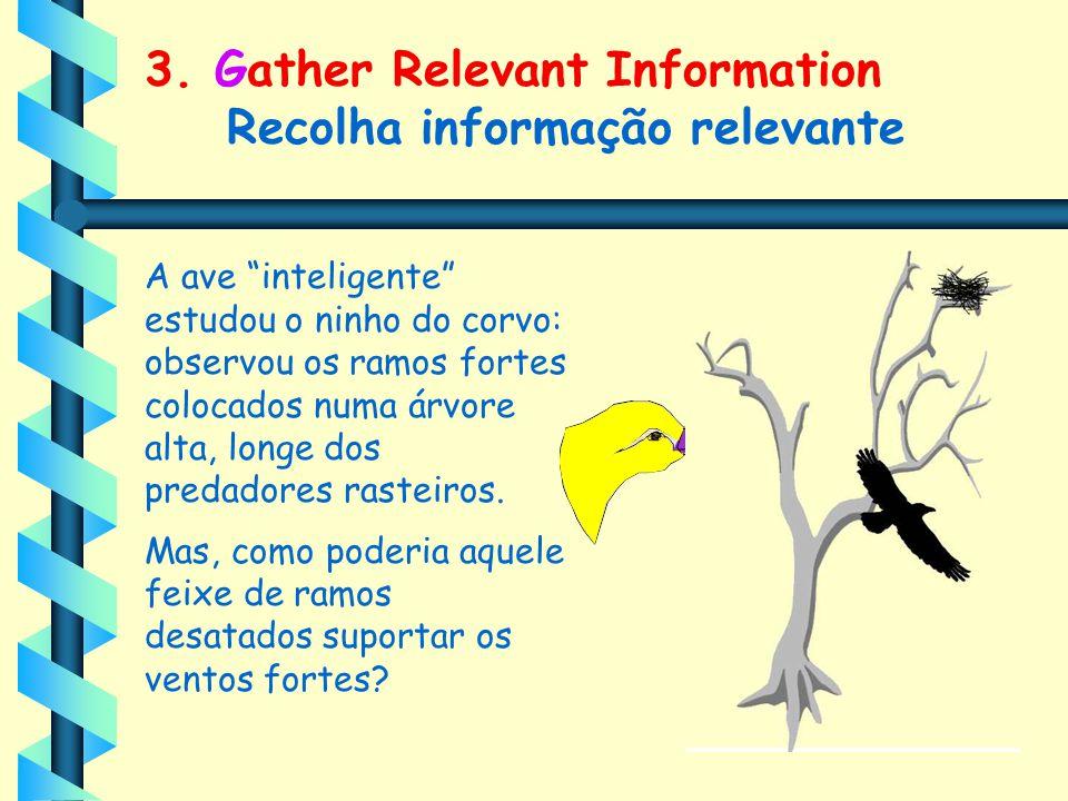 3. Gather Relevant Information Recolha informação relevante