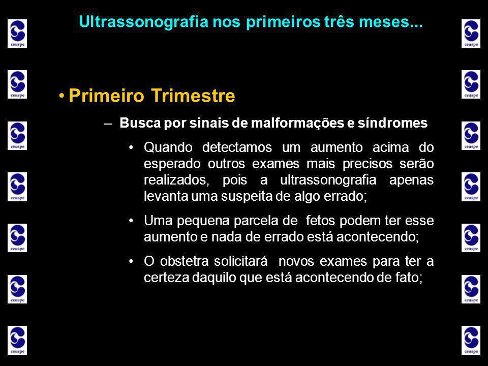 Ultrassonografia nos primeiros três meses...