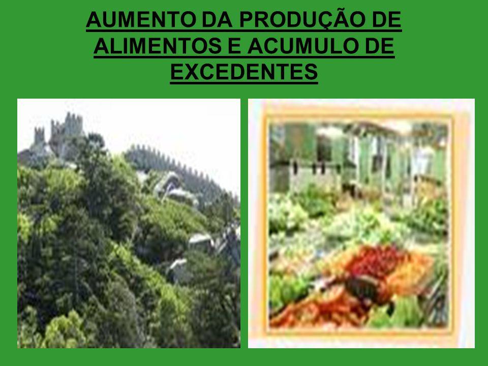 AUMENTO DA PRODUÇÃO DE ALIMENTOS E ACUMULO DE EXCEDENTES
