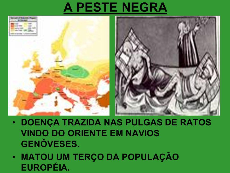 A PESTE NEGRA DOENÇA TRAZIDA NAS PULGAS DE RATOS VINDO DO ORIENTE EM NAVIOS GENÔVESES.