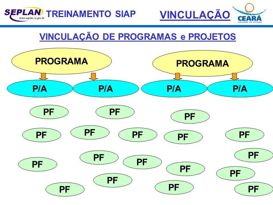 VINCULAÇÃO DE PROGRAMAS e PROJETOS