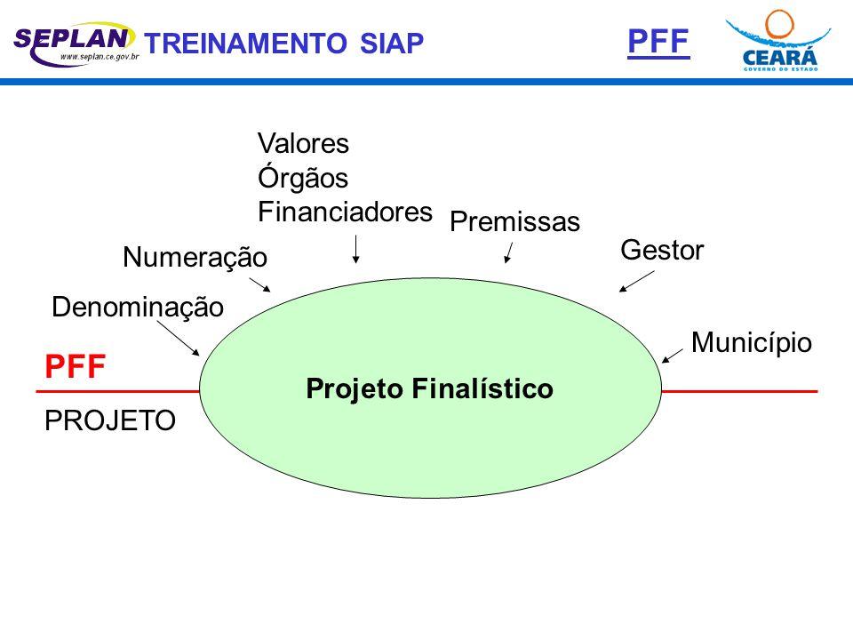 PFF PFF Valores Órgãos Financiadores Premissas Gestor Numeração