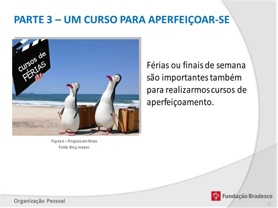 Figura 4 – Pinguins em férias.