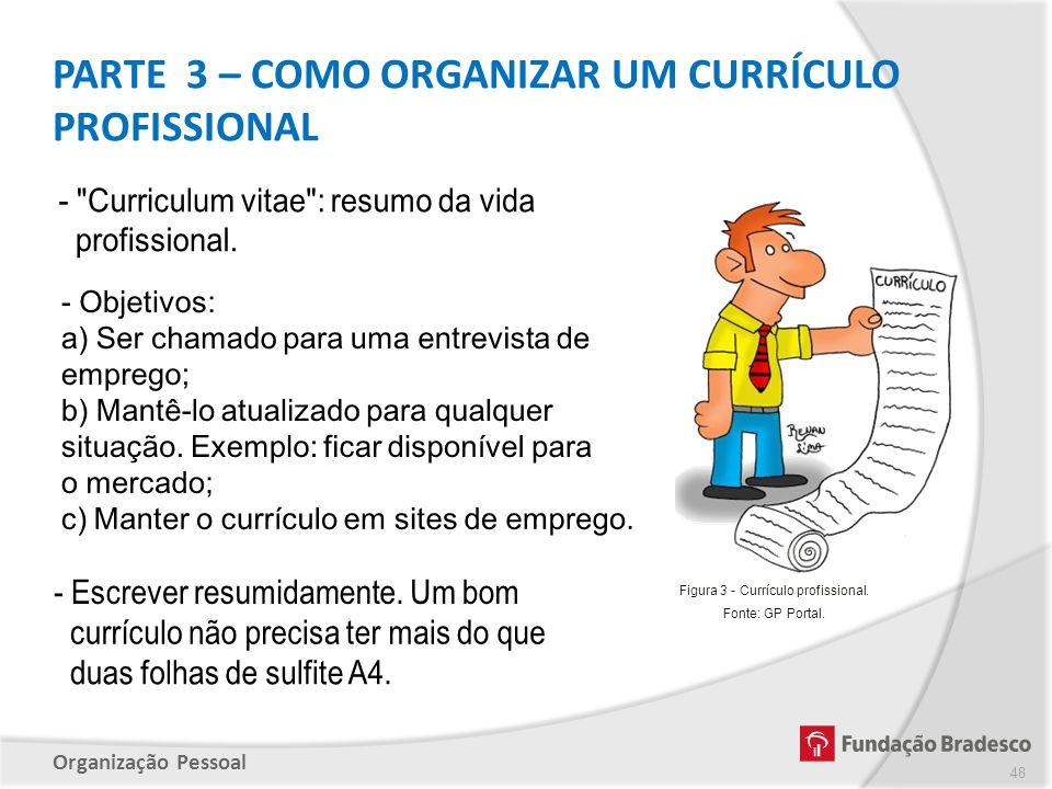 Figura 3 - Currículo profissional.
