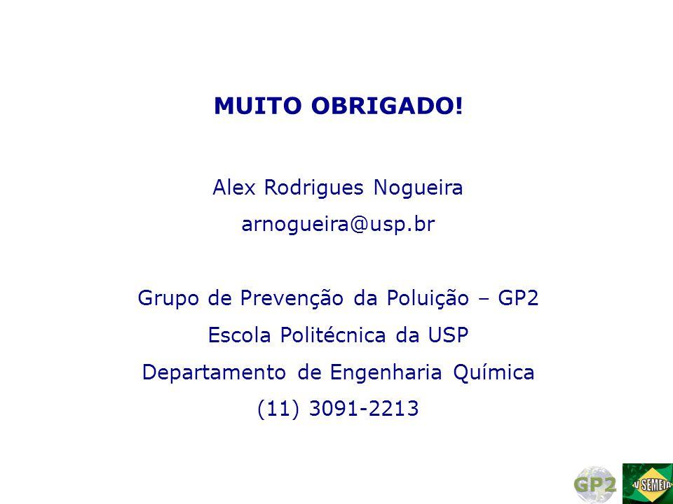 MUITO OBRIGADO! Alex Rodrigues Nogueira arnogueira@usp.br