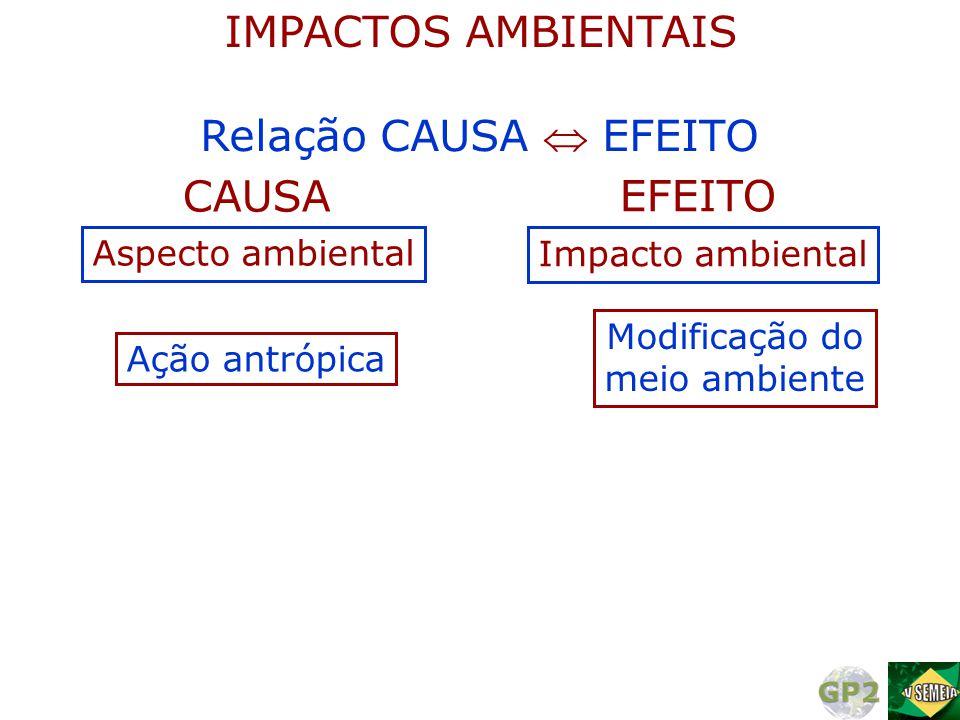 IMPACTOS AMBIENTAIS Relação CAUSA  EFEITO CAUSA EFEITO