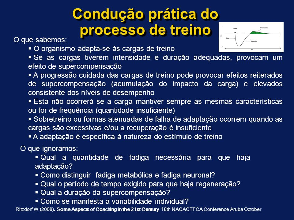 Condução prática do processo de treino