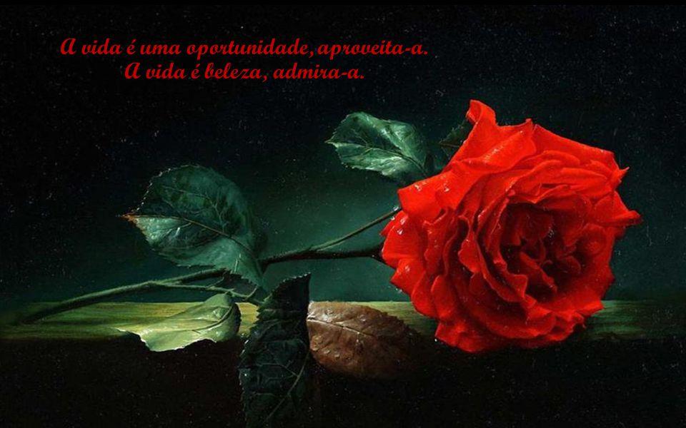 A vida é uma oportunidade, aproveita-a. A vida é beleza, admira-a.