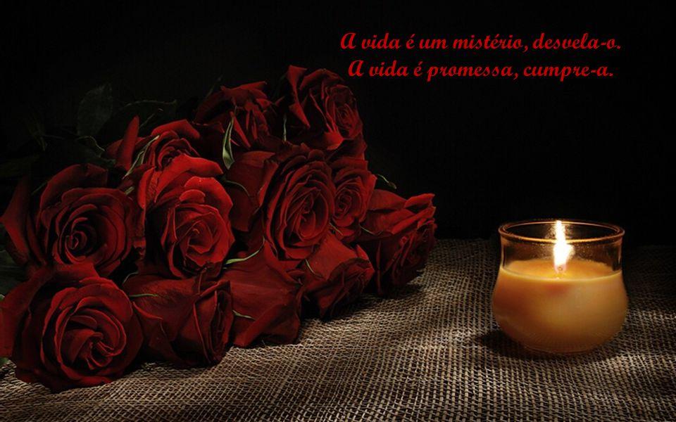 A vida é um mistério, desvela-o. A vida é promessa, cumpre-a.
