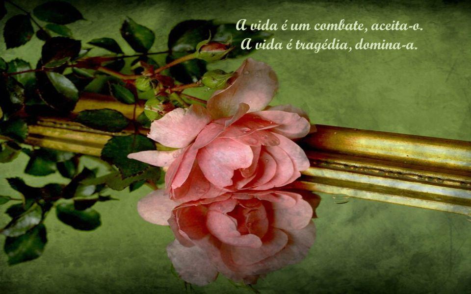 A vida é um combate, aceita-o. A vida é tragédia, domina-a.