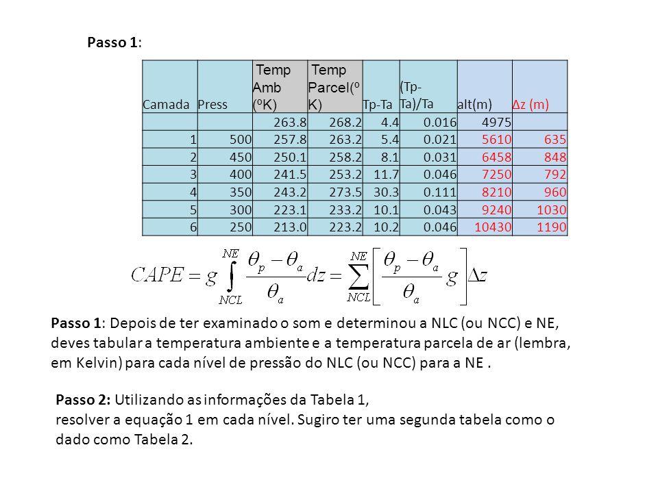 Passo 1: Camada. Press. Temp Amb (ºK) Temp Parcel(ºK) Tp-Ta. (Tp-Ta)/Ta. alt(m) Δz (m) 263.8.