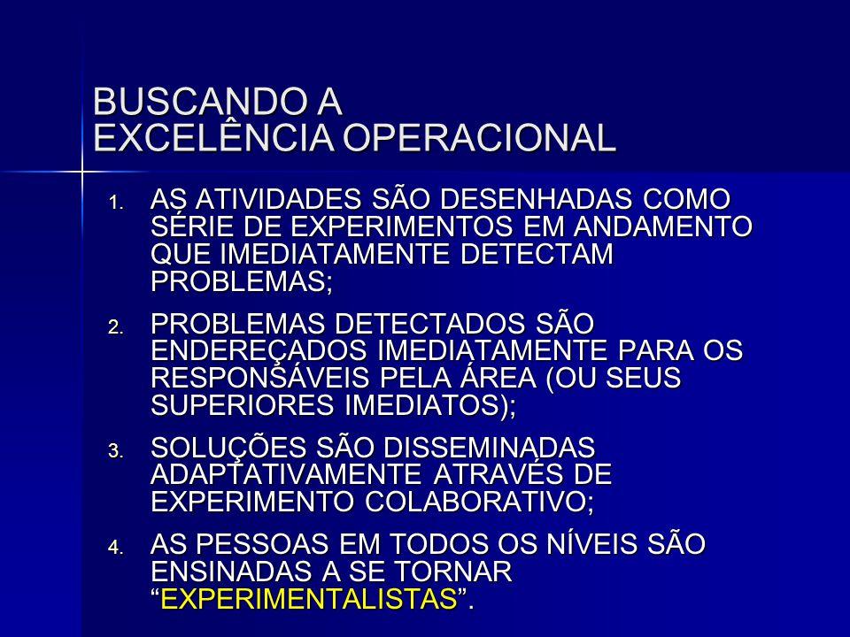 BUSCANDO A EXCELÊNCIA OPERACIONAL