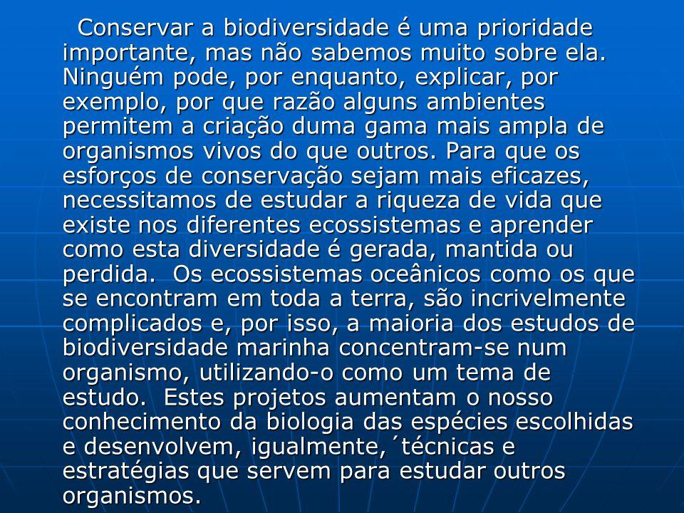 Conservar a biodiversidade é uma prioridade importante, mas não sabemos muito sobre ela.