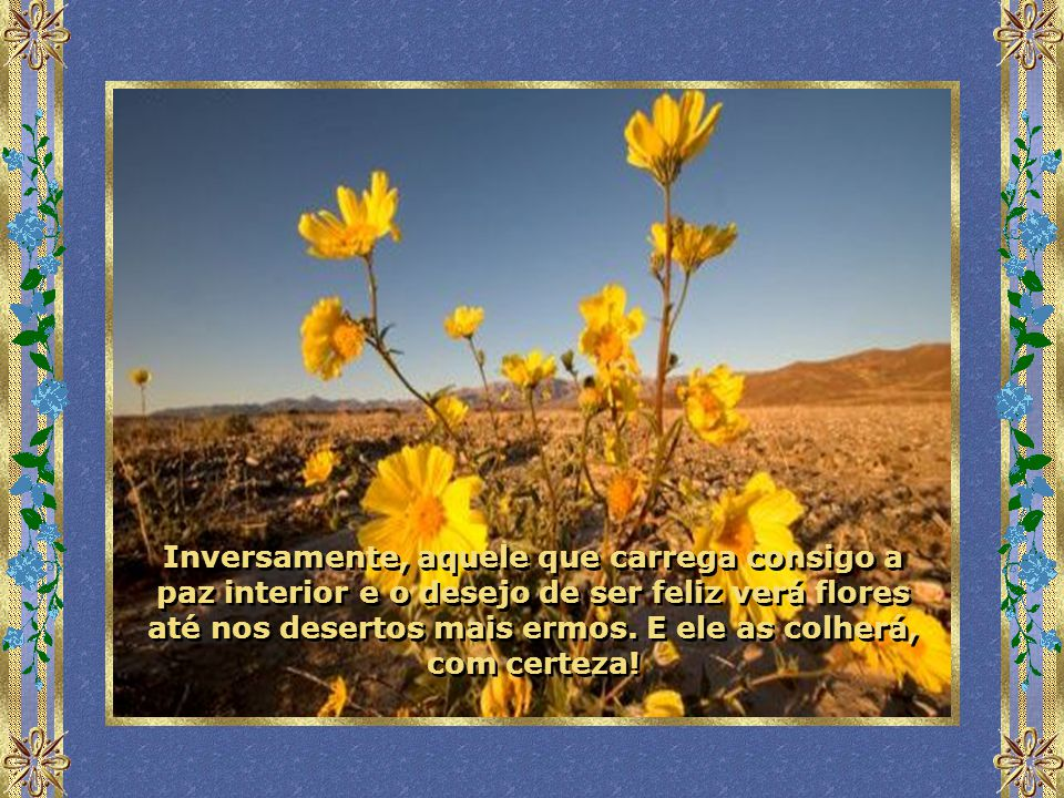 Inversamente, aquele que carrega consigo a paz interior e o desejo de ser feliz verá flores até nos desertos mais ermos.